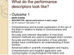 what do the performance descriptors look like