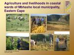 agriculture and livelihoods in coastal wards of mbhashe local municipality eastern cape