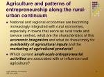 agriculture and patterns of entrepreneurship along the rural urban continuum