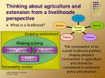 thinking about agriculture and extension from a livelihoods perspective