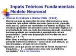 inputs te ricos fundamentais modelo neuronal