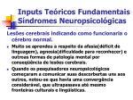 inputs te ricos fundamentais s ndromes neuropsicol gicas