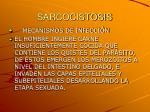 sarcocistosis4