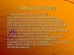 sarcocistosis5