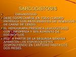 sarcocistosis9