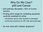 why do we care p53 and cancer