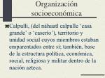 organizaci n socioecon mica
