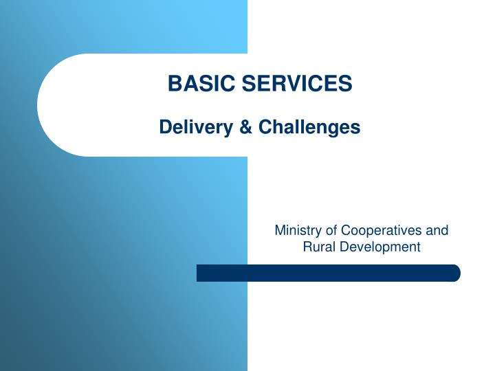 basic services delivery challenges n.