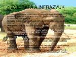 zvierat a infrazvuk