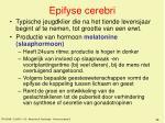 epifyse cerebri