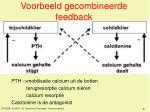 voorbeeld gecombineerde feedback