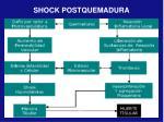 shock postquemadura