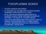 toxoplasma gondii15