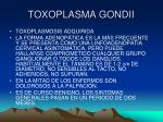 toxoplasma gondii16