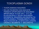 toxoplasma gondii17