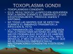 toxoplasma gondii18