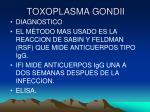 toxoplasma gondii22
