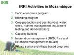 irri activities in mozambique
