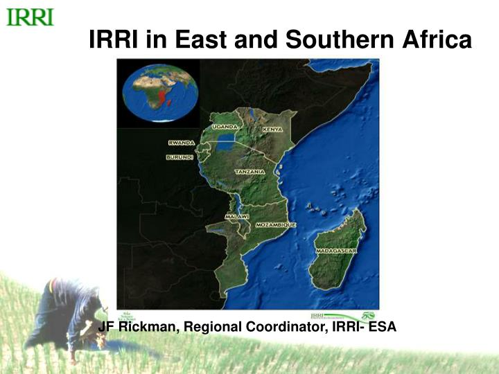 irri in east and southern africa n.