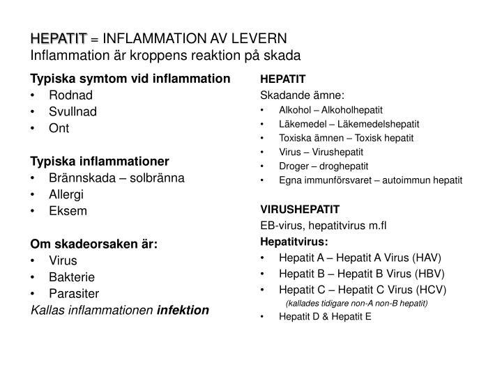 Hepatit inflammation av levern inflammation r kroppens reaktion p skada