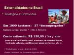 externalidades no brasil9