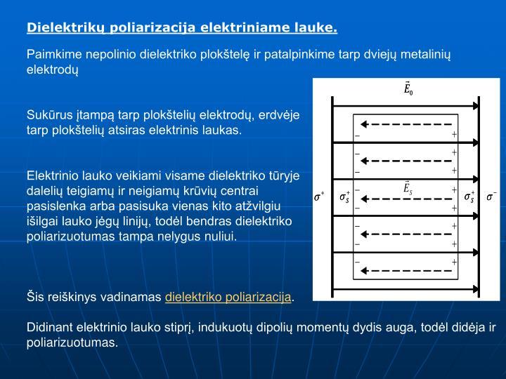 Dielektrikų poliarizacija elektriniame lauke.