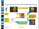 dopaminerges system und verhaltensbewertung1