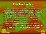 fase biosintetica