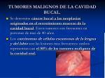 tumores malignos de la cavidad bucal