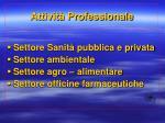 attivit professionale2