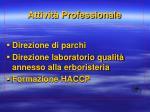 attivit professionale3
