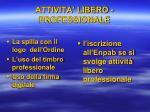 attivita libero professionale2