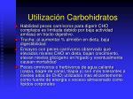 utilizaci n carbohidratos