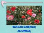 slide262