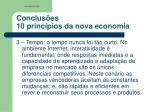 conclus es 10 princ pios da nova economia2