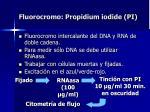 fluorocromo propidium iodide pi