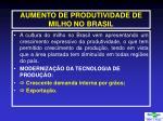 aumento de produtividade de milho no brasil