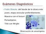 ex menes diagn sticos