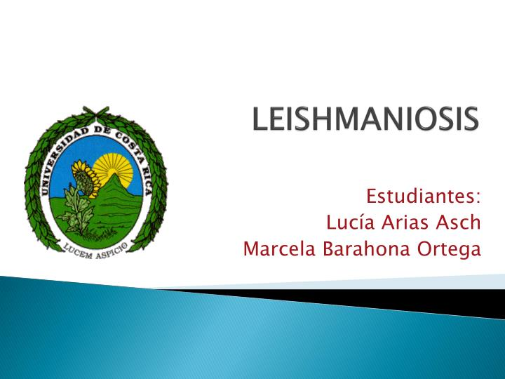leishmaniosis n.