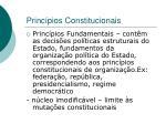 princ pios constitucionais2