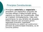 princ pios constitucionais4