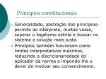 princ pios constitucionais5
