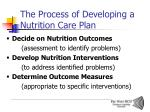 the process of developing a nutrition care plan