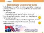 websphere commerce suite