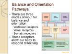 balance and orientation pathways