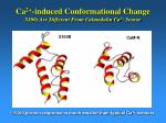 ca 2 induced conformational change s100s are different from calmodulin ca 2 sensor