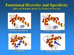 functional diversity and specificity different binding modes for different proteins