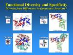 functional diversity and specificity diversity from differences in quaternary structure