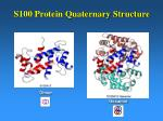s100 protein quaternary structure