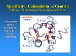 specificity calmodulin vs centrin differences in the binding sites for different proteins